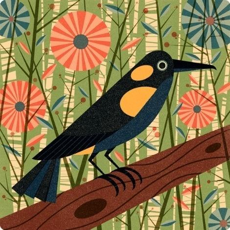 grain edit · Ben Newman #bird