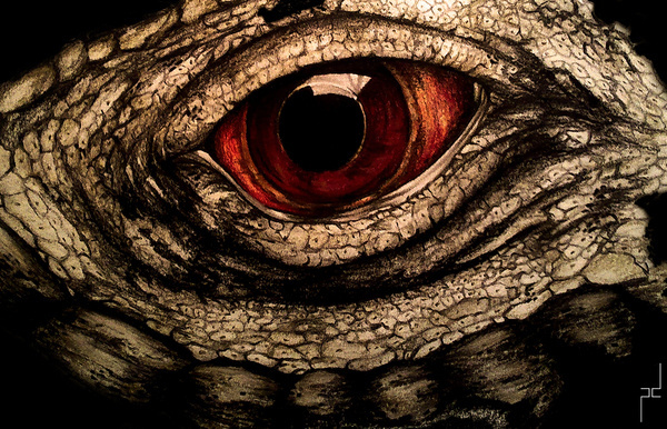 Author: PaulaDuță #eye #illustration #eyelid #reptile #painting #dinosaur #lizard