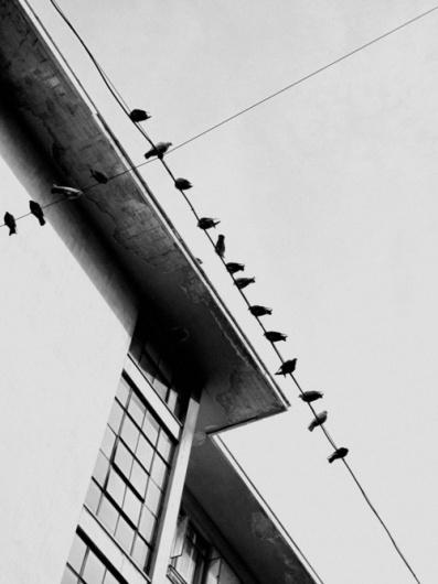 hellopanos blog #photography