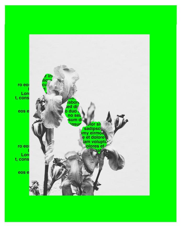 #floraipsum #gif #typography #vsco © [ catrin mackowski ]