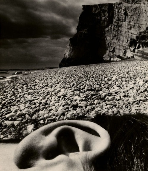 Nude, Seaford, East Sussex Coast, 1957. Bill Brandt. http://off-the-wall-b.tumblr.com/ #white #brandt #uk #bill #black #pebbles #and #beach
