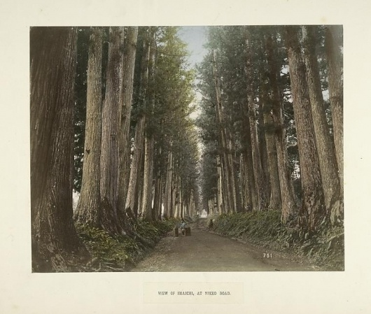 All sizes   View of Imaichi, at Nikko Road   Flickr - Photo Sharing! #trees #forest #japan