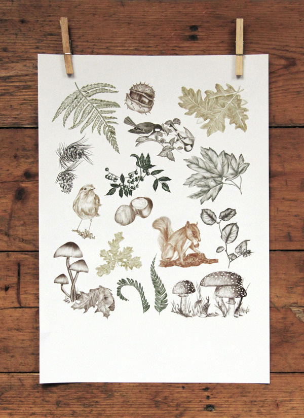 FLOURISH IN OBSCURITY on Behance #illustration #autumn #poster #animals #forest #leaves