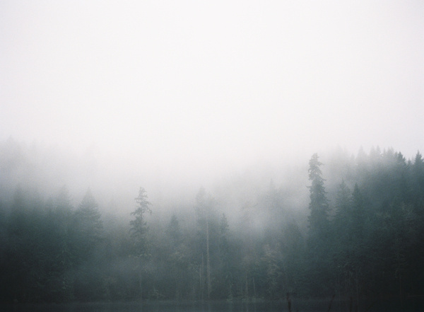 Coffee Brewing in the Great Outdoors KINFOLK #fog #forest #nature #trees