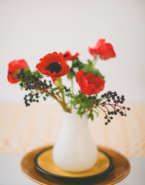 Likes | Tumblr #flowers #poppies