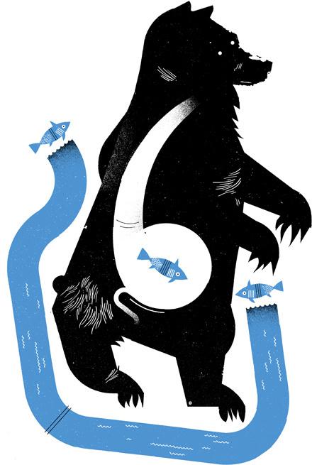 fishy bear #bear #illustration #fish #illy
