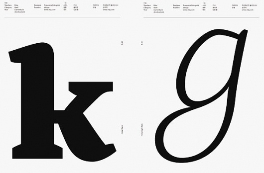#16 TYPE ARCHIVE ISSUE : GRAPHIC