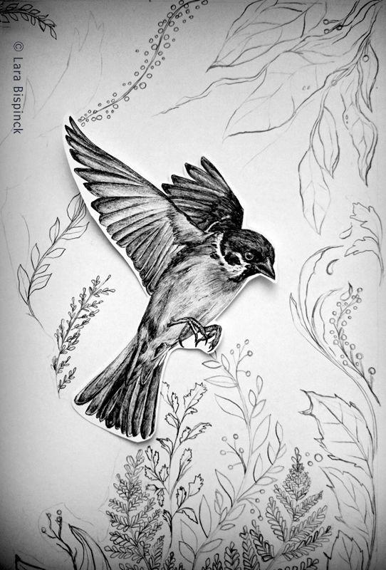 #handdrawn #biro #bird #illustration #sperling #spatz #singvogel #flying #nature #flora #botanical illustration #larabispinckillustration #l