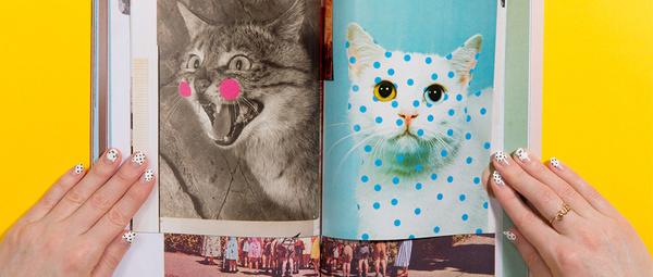Cat People Magazine #cat #magazine #people