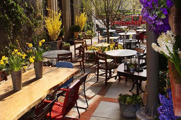 Tatula S Garden Restaurant Search By Muzli