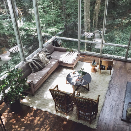 Livingroom & Nature view