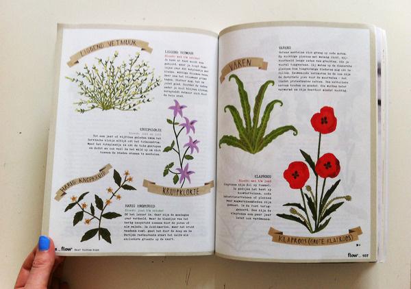 Ruby Taylor Illustration #print #plants #illustration