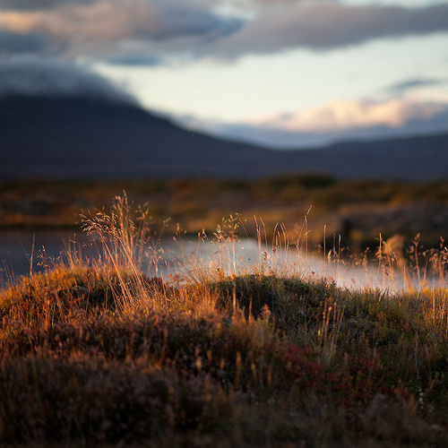 { i n s p i r a r e } #beauty #nature #photography #landscape
