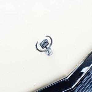 Cadillac | Sallie Harrison