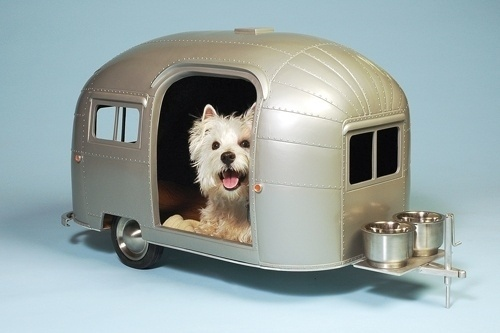 51783.jpg (500×333) #kitsch #trailer #dog