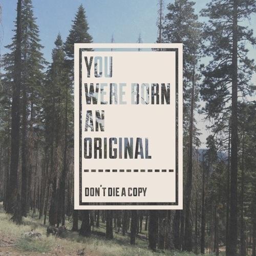 Tumblr #tree #quote #photo #nature #typography