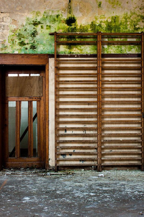 Jungle Gym #urban #old #urbex #jungle #photo #gym #photography #exploring #room #green