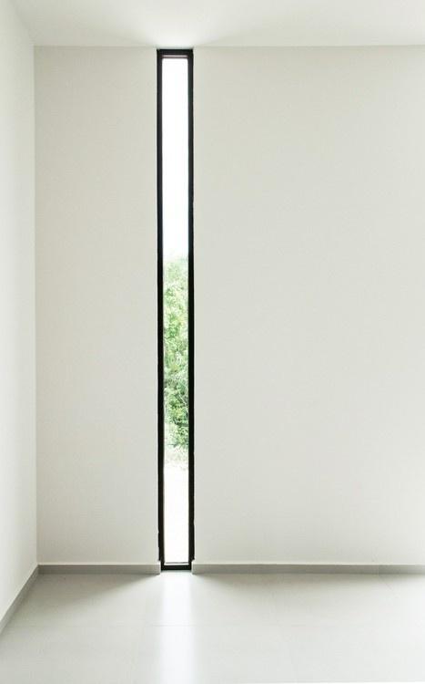 B_02 #window #light #architecture #trees