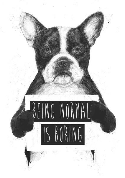 Being normal is boring - by Balazs Solti #typography