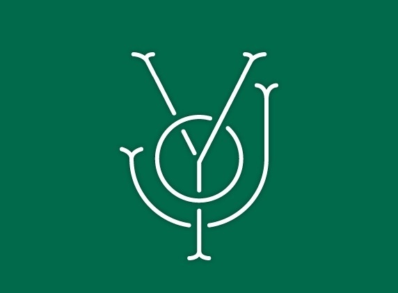 mkn design Michael Nÿkamp #font #letters #interset #typography #joy #green