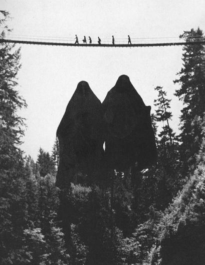 Beautiful/Decay Cult of the Creative Arts #creeps #vu #hiking #vintage #bridge #brian