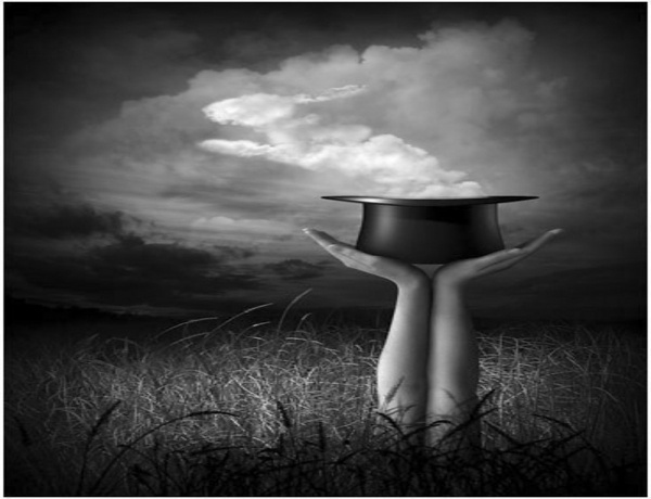 Rabbit In Hat Magic Picture and Photo | Imagesize: kilobyte #field #cloud #hat #magic #hands #rabbit