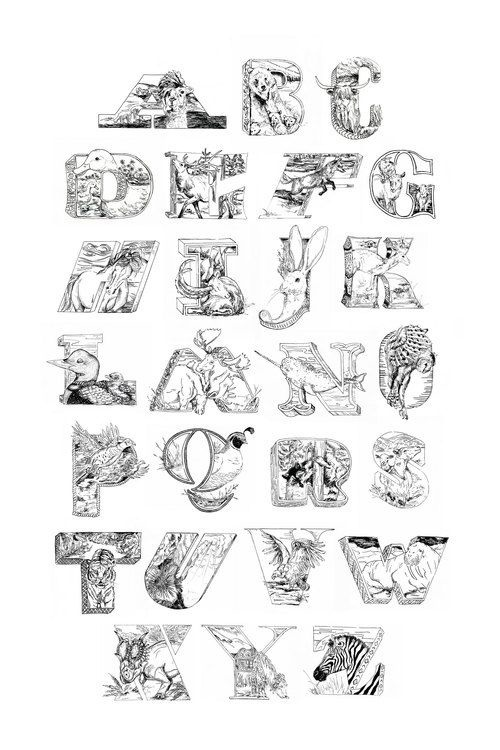 Animal Alphabet #animal #alphabet #letter #lettering #a #b #c #d #e #f #g #h #i #j # k # l #m #n #o #p #q #r #s #t #u #v #x #y #z #qual #nar