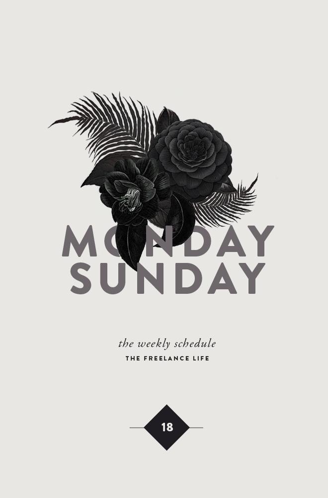 TFL 18 | MONDAY TO SUNDAY