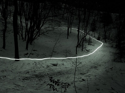 (Land)scapes on the Behance Network #forest #photography #light