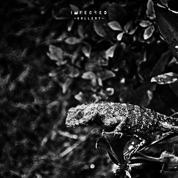 Wild #wild #gallery #leaf #infected #close #nature #photography #up #lizard