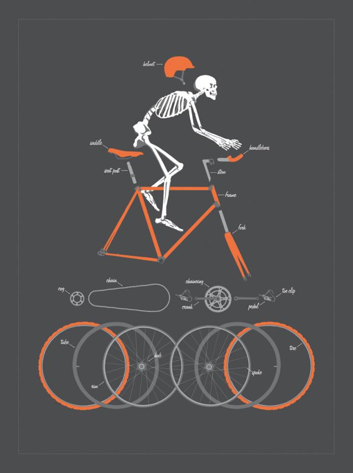 Bicycle Anatomy Art Print by Doug Harry