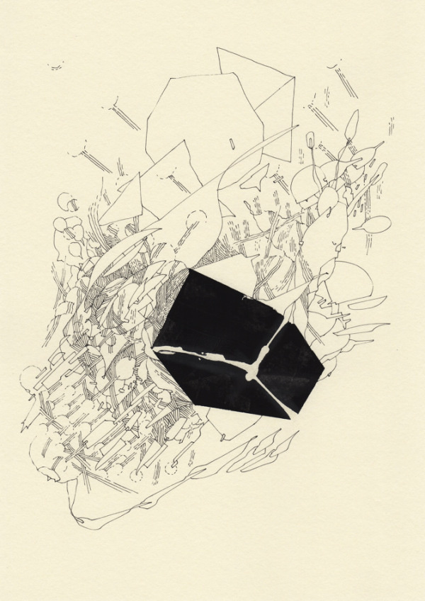Robert Malte Engelsmann | PICDIT