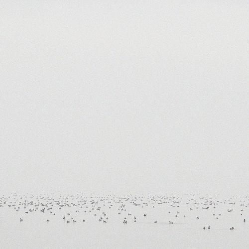 tumblr_l0f7hzF3Xd1qzuyswo1_500.jpg (JPEG Image, 500×500 pixels) #white #water #art #photograpy