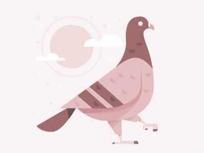 Pigeon #illustration