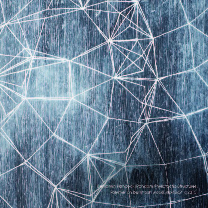 3.1415 - SCAR #art #wood #oil #generative #geometry