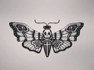 Moth #moth #drawing #illustration