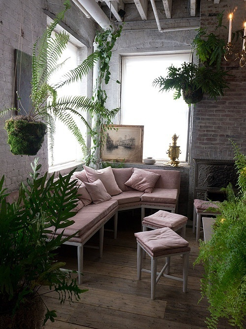 bellocq #plants #space #green