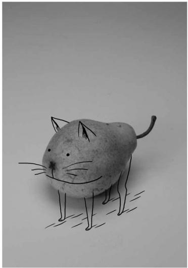 Lustik #pear #cat #illustration #vijoux #quentin