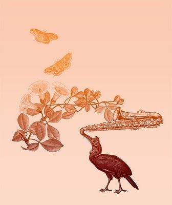 Eduardo Recife #saxophone #butterflys #bird #music #collage