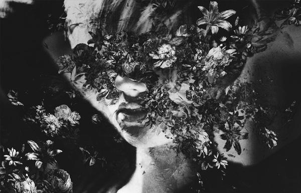 Mathias Sterner | LUST NATION #mathias #lustnation #sterner #photo #photography #flower #work