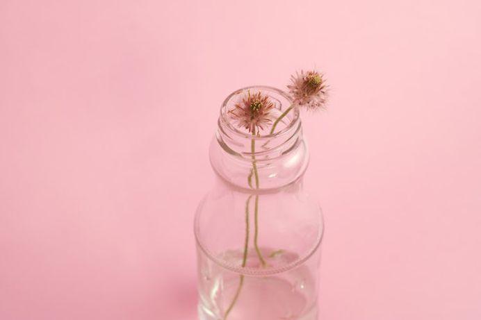 Tea, flower, pink and clear glass HD photo by Neven Krcmarek (@nevenkrcmarek) on Unsplash