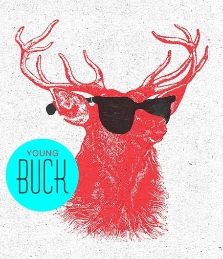 All sizes | Young Buck. | Flickr - Photo Sharing! #deer #red #ban #ray #illustration