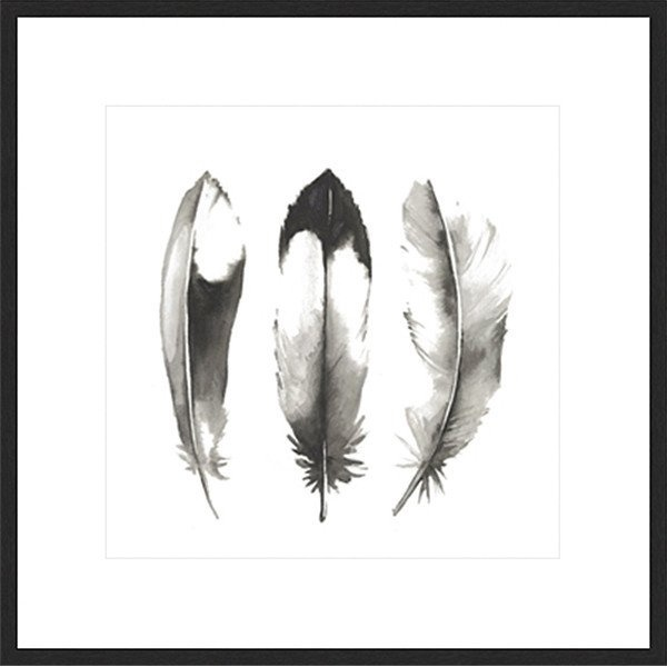 Framed Print 'Water Colour Feathers II' 50cm x 50cm