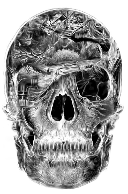 Designersgotoheaven.com Fantasmagorik Skull. #skull