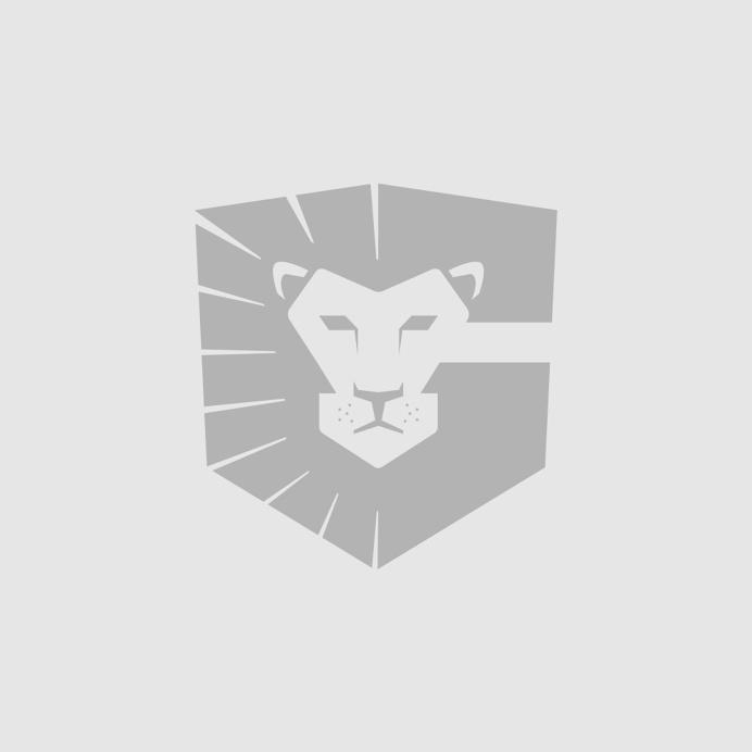 GISD lion/shield/G logo branding - minimal brand logos mark design brands icon icons