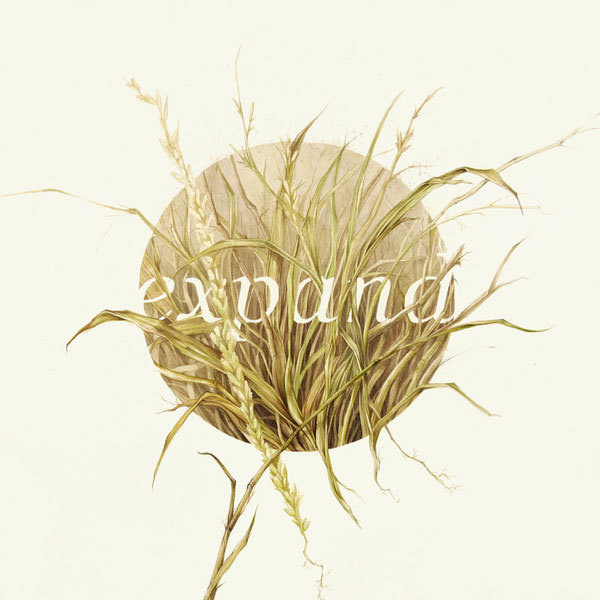 Graphic ExchanGE a selection of graphic projects #illustration #nature