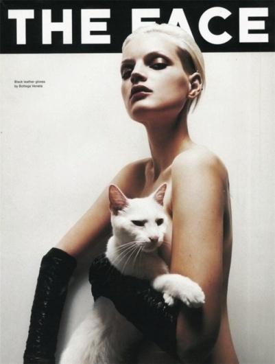 arborvitae #cover #gloves #cat #girl