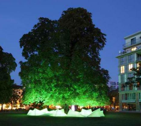 tree music 1 #geometry #public #tree #space #nature #light