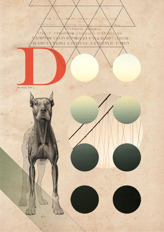 matija drozdek 9 #illustration #design #graphic #collage
