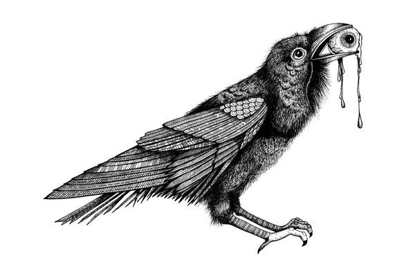 Abbotsford Ravens #ink #white #black #bird #eye #illustration #pen #and #raven